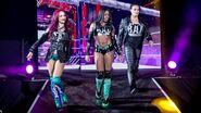 WWE World Tour 2015 - Glasgow 11