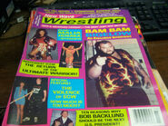 New Wave Wrestling - November 1995