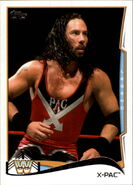 2014 WWE (Topps) X-Pac 110