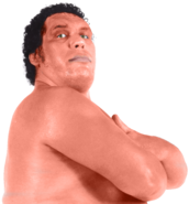 Andre The Giant 2
