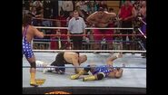 Survivor Series 1993.00025