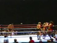 The Brawl to End It All.00049