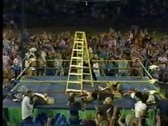 Great American Bash 1987.00021