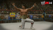 WWE 2K14 Screenshot.17