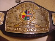 AWA Southern Tag Champion