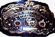 WWWF Jr. Heavyweight Champion