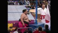 Royal Rumble 1994.00020