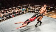 WWE WrestleMania Revenge Tour 2016 - Sheffield 3