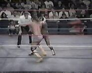 WWF The Wrestling Classic.00008