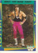 1995 WWF Wrestling Trading Cards (Merlin) Bret Hart 1