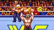 WWF WrestleFest.1