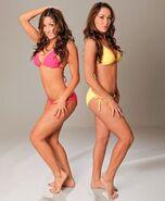 Bella Twins.53