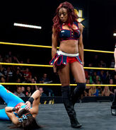 NXT 06.12.13 2