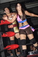 ROH Battle of the Icons 32