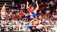 SummerSlam 1989-17