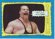 1987 WWF Wrestling Cards (Topps) Jim Neidhart 67