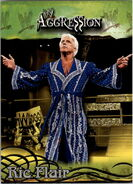 2003 WWE Aggression Ric Flair 26