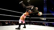 WWE World Tour 2013 - Minehead.1
