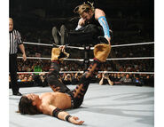 Royal Rumble 2007.3