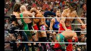 WrestleMania 26.73