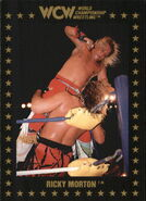 1991 WCW Collectible Trading Cards (Championship Marketing) Ricky Morton 30