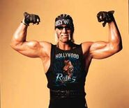 Hulk Hogan 14
