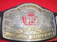 WWF Tag Team Champion (old)