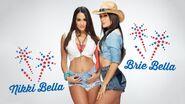 The Bellas 2013 All-American Divas WWE Shoot