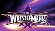 200px-WrestleMania XXX banner