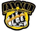 All Wrestling Organization.jpg