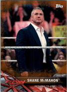 2017 WWE Road to WrestleMania Trading Cards (Topps) Shane McMahon 31
