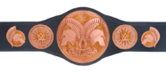 WWE Tag Team Championship 2014