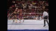 SummerSlam 1990.00045