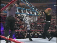 Royal Rumble 2000 Hardyz hit Dudley with ladder