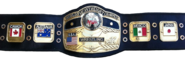 NWA World Championship new