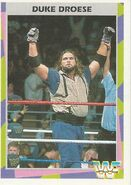 1995 WWF Wrestling Trading Cards (Merlin) Duke Droese 137