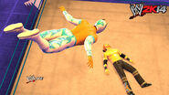 WWE 2K14 Screenshot.80