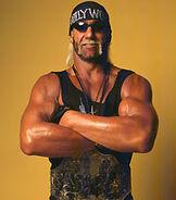 Hulk Hogan WCW Championship 3