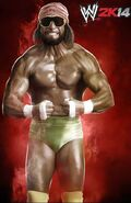 WWE2K14 Macho Man.1