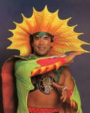 Ricky Steamboat6