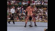 WrestleMania IX.00040