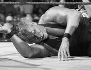 WrestleMania 22.46