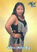 Mari Apache 2