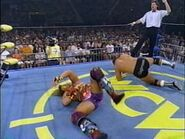 The Great American Bash 1995.00029