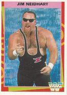 1995 WWF Wrestling Trading Cards (Merlin) Jim Neidhart 9