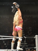 Kelly Kelly as divas champion