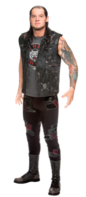 Baron Corbin Stat Photo