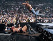 SummerSlam 2002.3