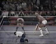 WWF The Wrestling Classic.00025