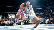 SummerSlam 2002.14